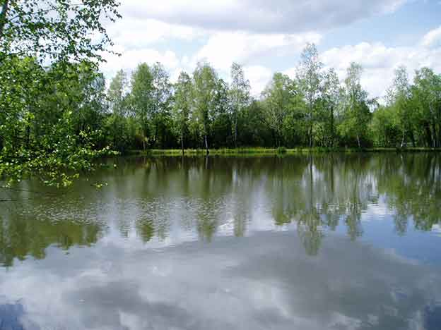 Private carp lake for sale france good fishing for Private fishing lakes